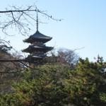 三渓園三重塔