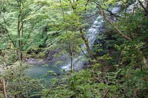 大滝沢の滝