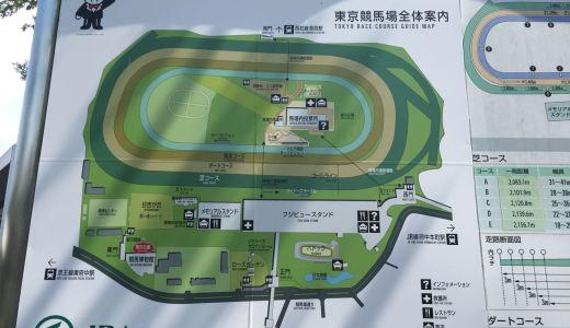 東京競馬場(府中競馬場)の公園で水遊び|馬シャ馬シャパークの噴水がおススメ