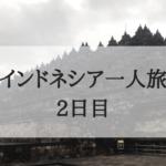 【インドネシア一人旅 2日目】ついに!念願のボロブドゥール遺跡に行ってきたよ !!!