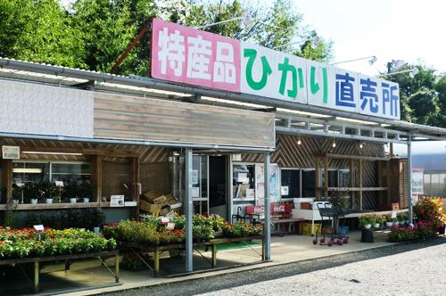 souvenir_01hikari-tyokubaijo
