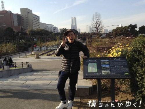 薔薇部山下公園