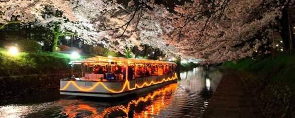 ohanami-enkai-cruise