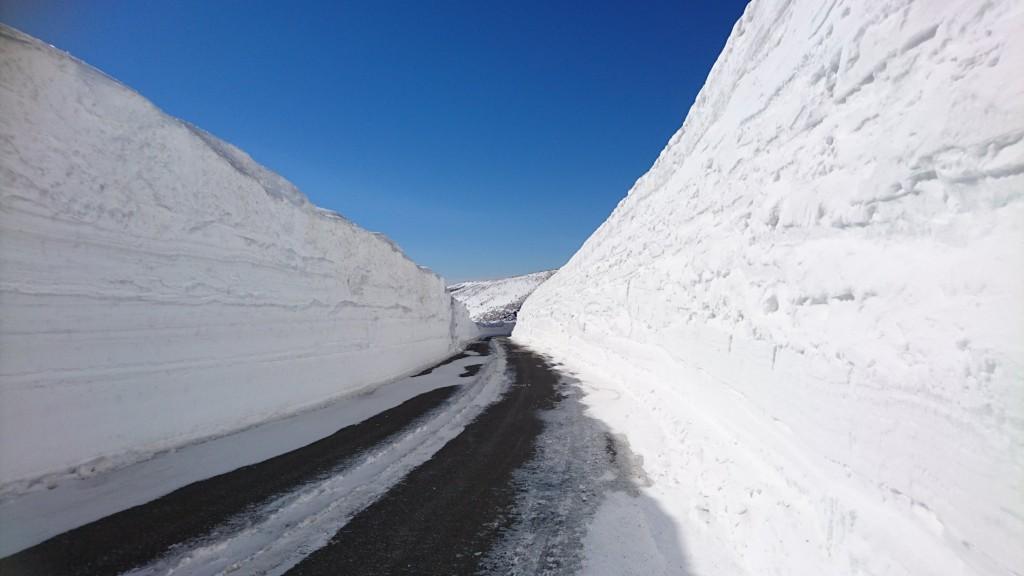 横手山渋峠スキー場 積雪情報