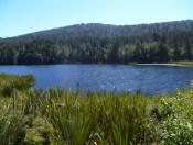 02-Lake Matheson (800x600)