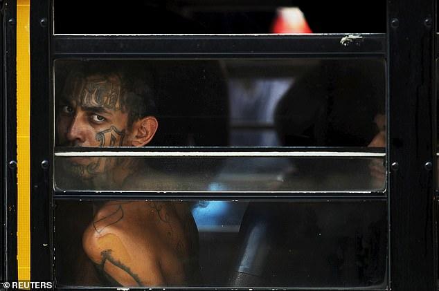太流氓了吧!薩爾瓦多連續兩天沒有兇殺案,全國居家隔離後發布的影片竟然是 Gangster 所為?! 5