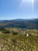 Douro valley road trip