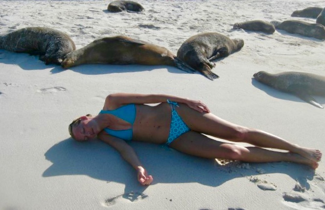 sea lions on the beach, espanola island, Galapagos