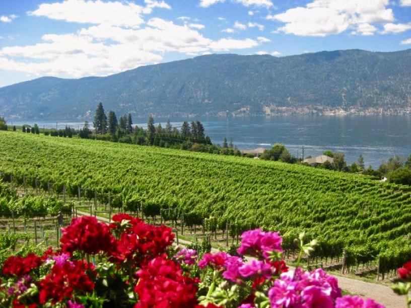 Gray Monk winery, Lake Country, BC