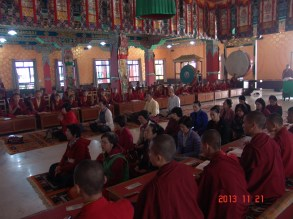 33 (Tergar Main Hall During Pupa)