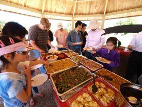 Lots_of_Food