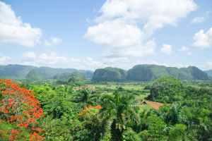 scenic view of lush mountainous valley