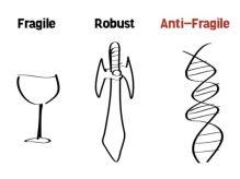 antifragile-11-638-533x400