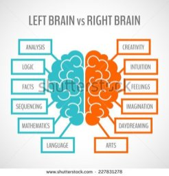 stock-vector-brain-left-analytical-and-right-creative-hemispheres-infographics-set-vector-illustration-227831278
