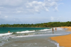 Guadeloupe-French-Carribean-2020-4K.mp4_snapshot_02.29_2021.04.26_16.58.29