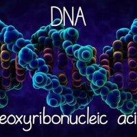 Αρχαίοι Αστροναύτες, Λαντιανοί, DNA και DNA 12 - Μέρος Δεύτερο