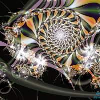 Homoastralis Fractal Artwork – Julia Sterlizia