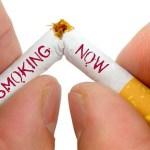 The World No Tobacco Day: Kita harus berbuat
