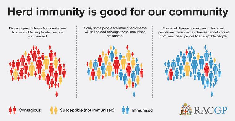 herd immunity: hukum vaksin adalah halal