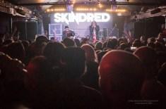 skindred-19