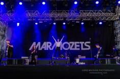 Marmozets-1
