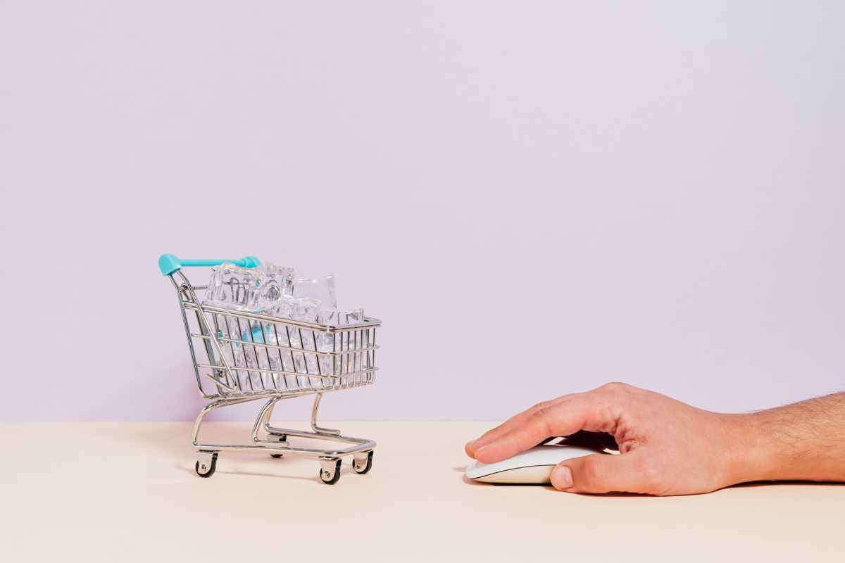 person holding white and blue shopping cart