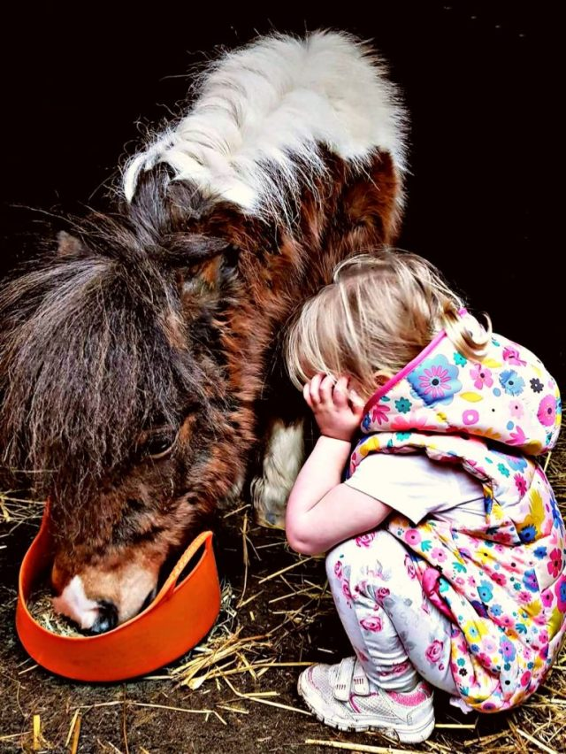 Ellie with her special shetland pony, Peanut.