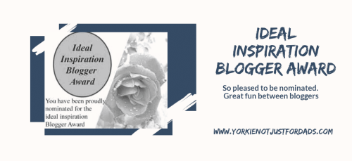 Featured image for the post the ideal inspiration blogger award