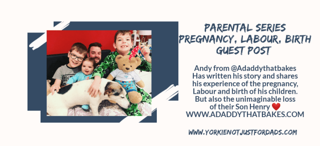 Featured image for the post parental series, pregnancy, labour and birth. Guest post