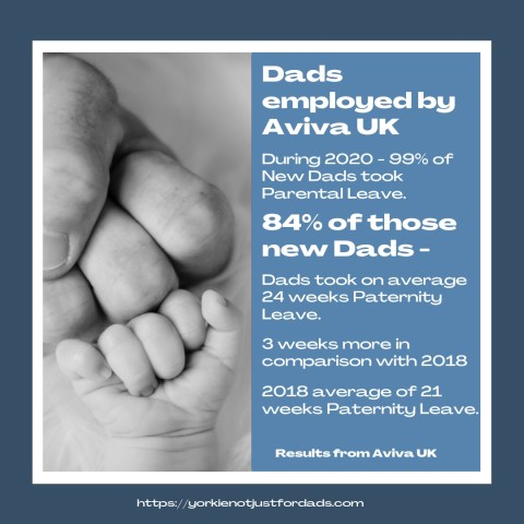 Here you can see some statistics regarding Aviva Dads and how they have benefitted from Aviva Uk's Equal Parental Leave policy.