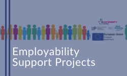 Employment Support Projects