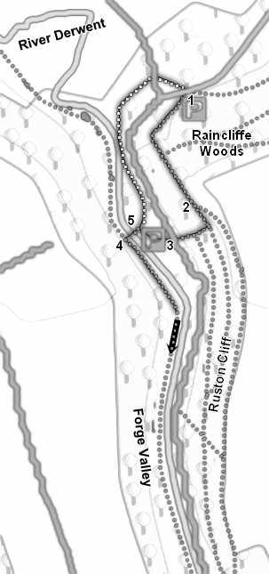 Printable version of Walk SE 9887/01 Forge Valley