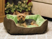 Look Here for Comfortable Small Dog Beds