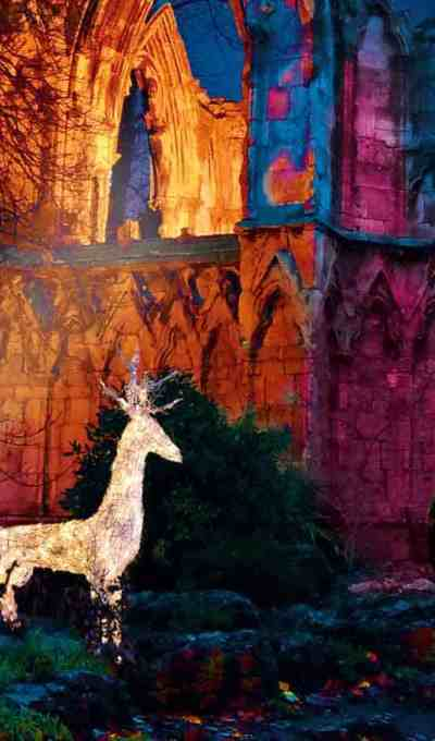 *New* Christmas at York Museum Gardens: Illuminated Walk and Fairy-tale Christmas Village
