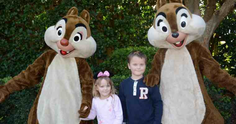 50+ Money Saving Tips for your Trip to Disney World