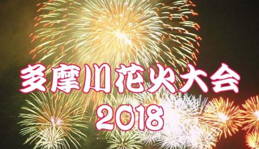多摩川花火大会2018は雨天時中止?有料席の払い戻しはある?