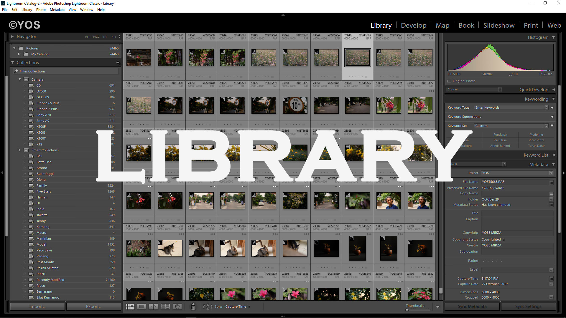 Library Module