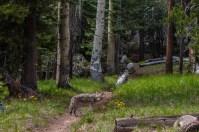 tuolumne scenery-180