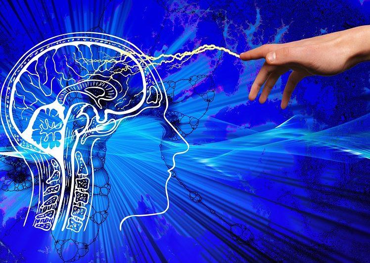 【必見】科学的に証明された、たった10分で頭が良くなる方法とは?