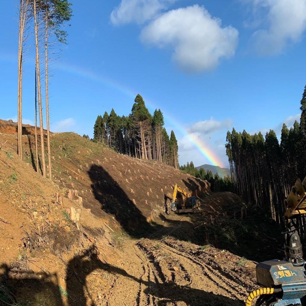 吉永林業の夏