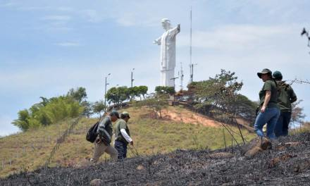 Cerro Los Cristales y Ecoparque Cristo Rey, resurgieron con el Plan Ave Fénix.