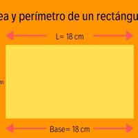¿Sabes calcular el área y el perímetro de un rectángulo?
