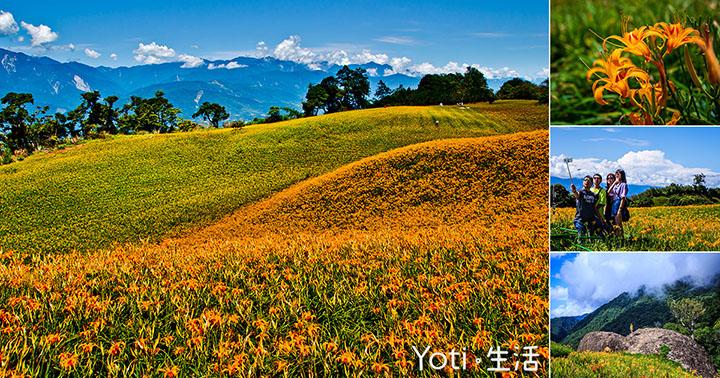 [花蓮玉里] 赤科山 | 金針花季行程規劃, 花況每年八、九月正是探訪忘憂之時!