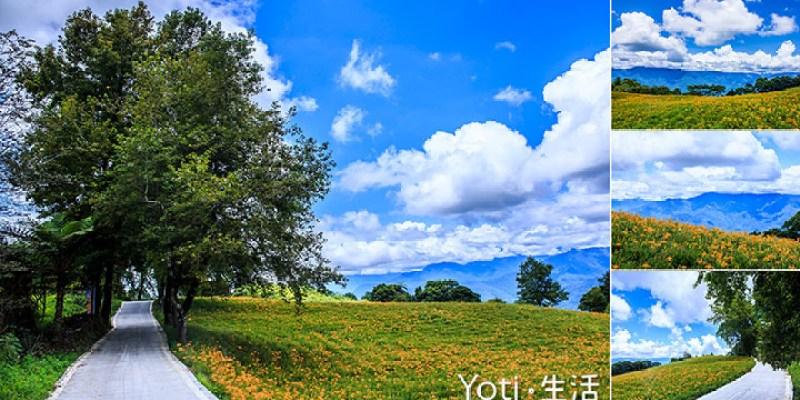 [花蓮玉里赤科山] 楓林道 | 夏金針秋楓葉, 一處遠眺中央山脈的小步道