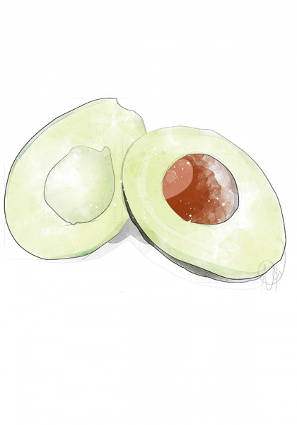 Food Illustration einer Avocado