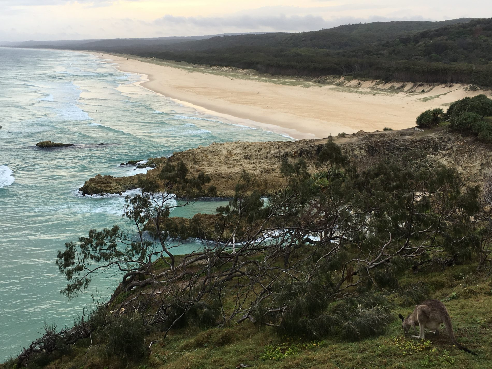 Point Lookout, North Stradbroke Island