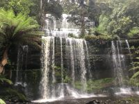 Russell Falls, Mount Field National Park
