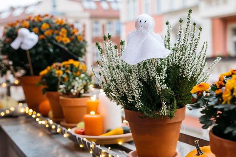 Halloween Dekoration mit Blumen selber machen
