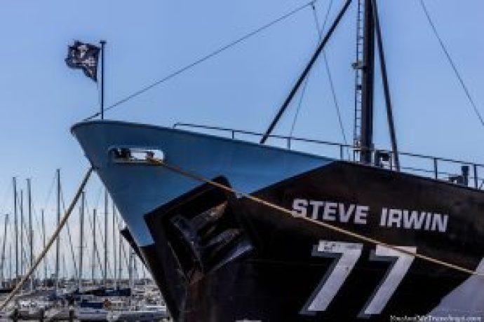 australia-melbourne-sea-shepherd-6643