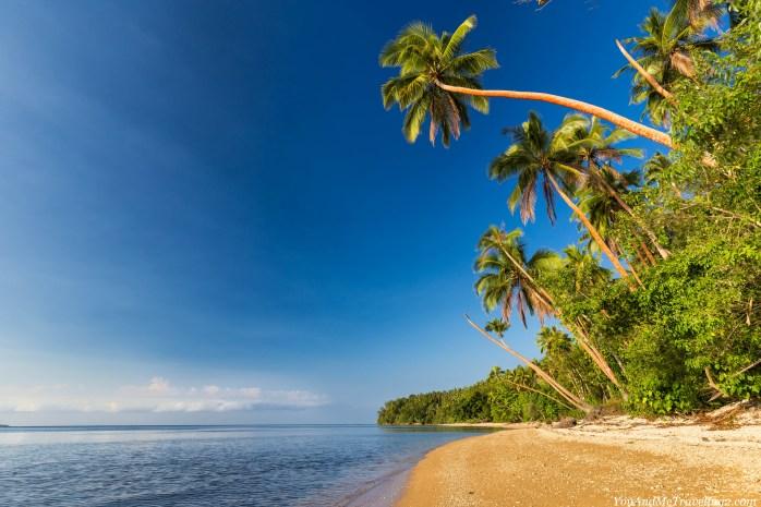 vanuatu-malekula-beach-7862